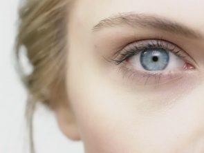 Antz - Kontaktlinsen